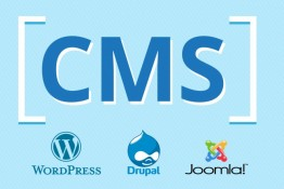 Установлю CMS. WordPress, Joomla, Drupal и т.д